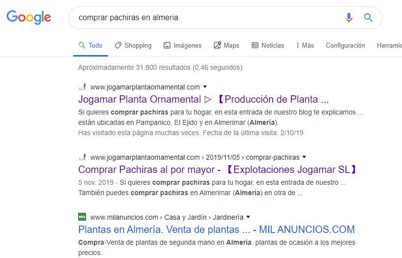 posicionamiento web en Almería